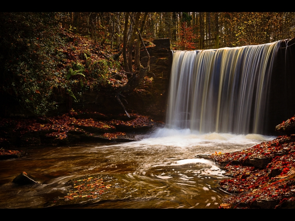 Joint 2nd Autumn Waterfall, Wendy Williams