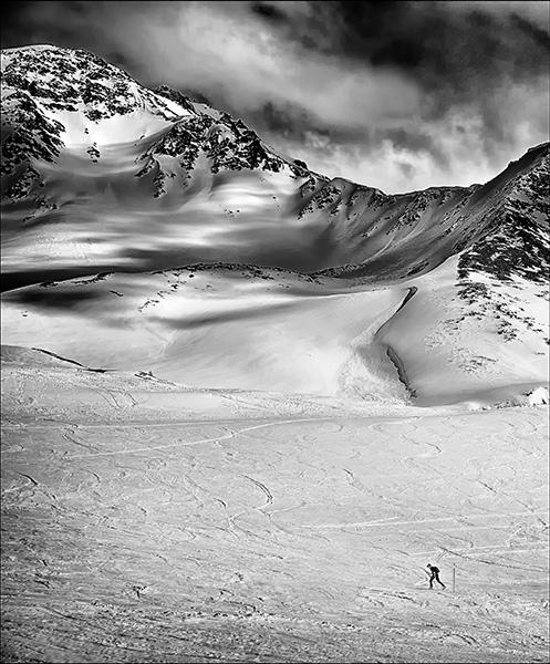Alpine Ski Walker