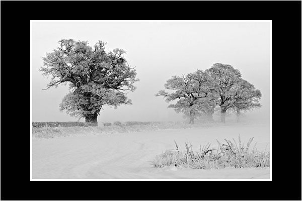 01 A Cold Morning In Shropshire
