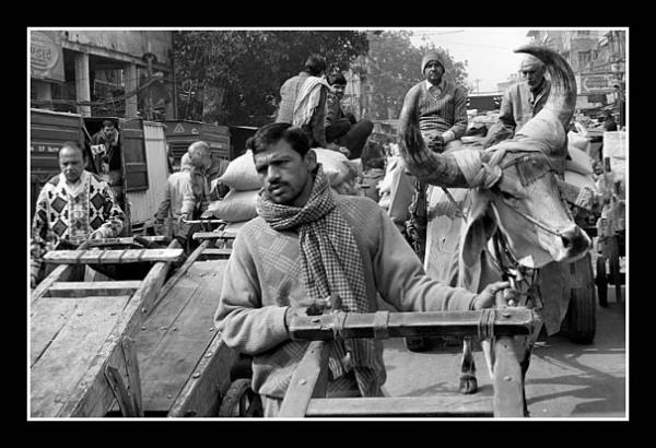 01 Chaos in Delhi Suzanne Mercer 020 0